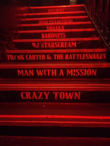 Image displaying stairs in Cathouse